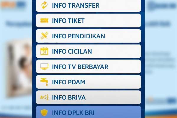 Cek Saldo DPLK via BRI Mobile