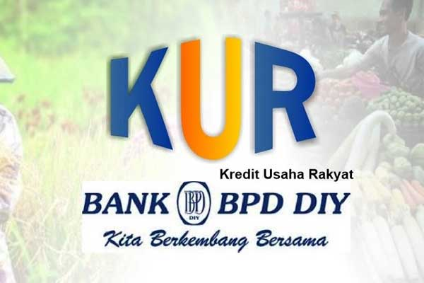 Jenis KUR Bank DIY