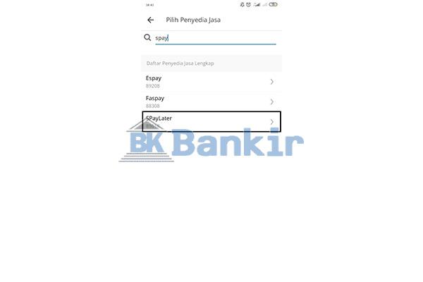 Pilih Penyedia Jasa ShopeePay Later
